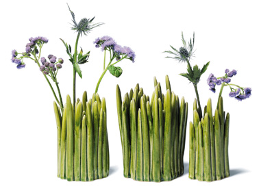 florero-grass