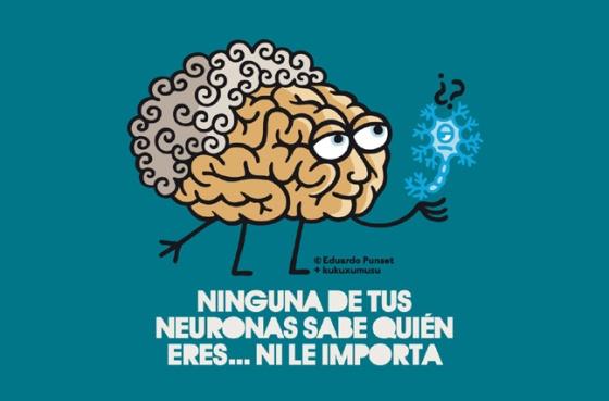 punset_neuronas