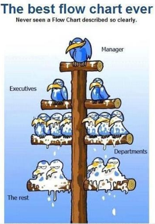 top_management_and_bottom_management