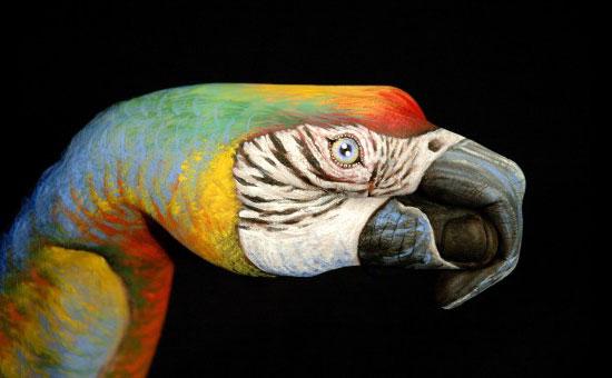 Hand-Painting-Art-Guido-Daniele-24