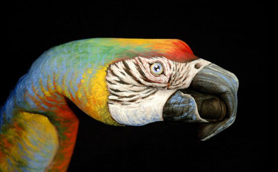 Hand-Painting-Art-Guido-Daniele-24