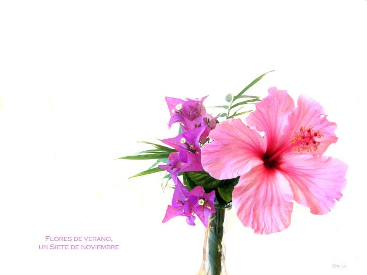 flores de veranootoño