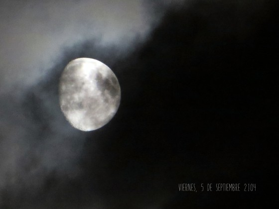 luna5-2