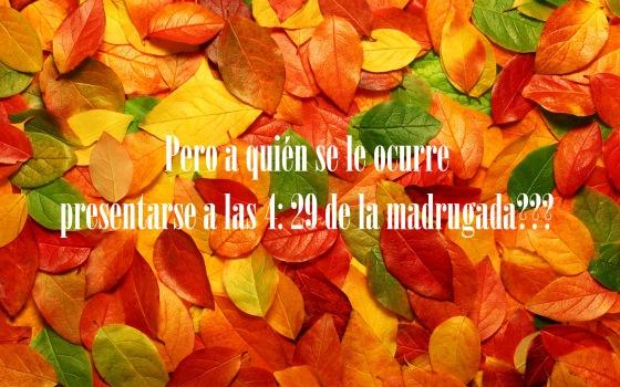 otoño14