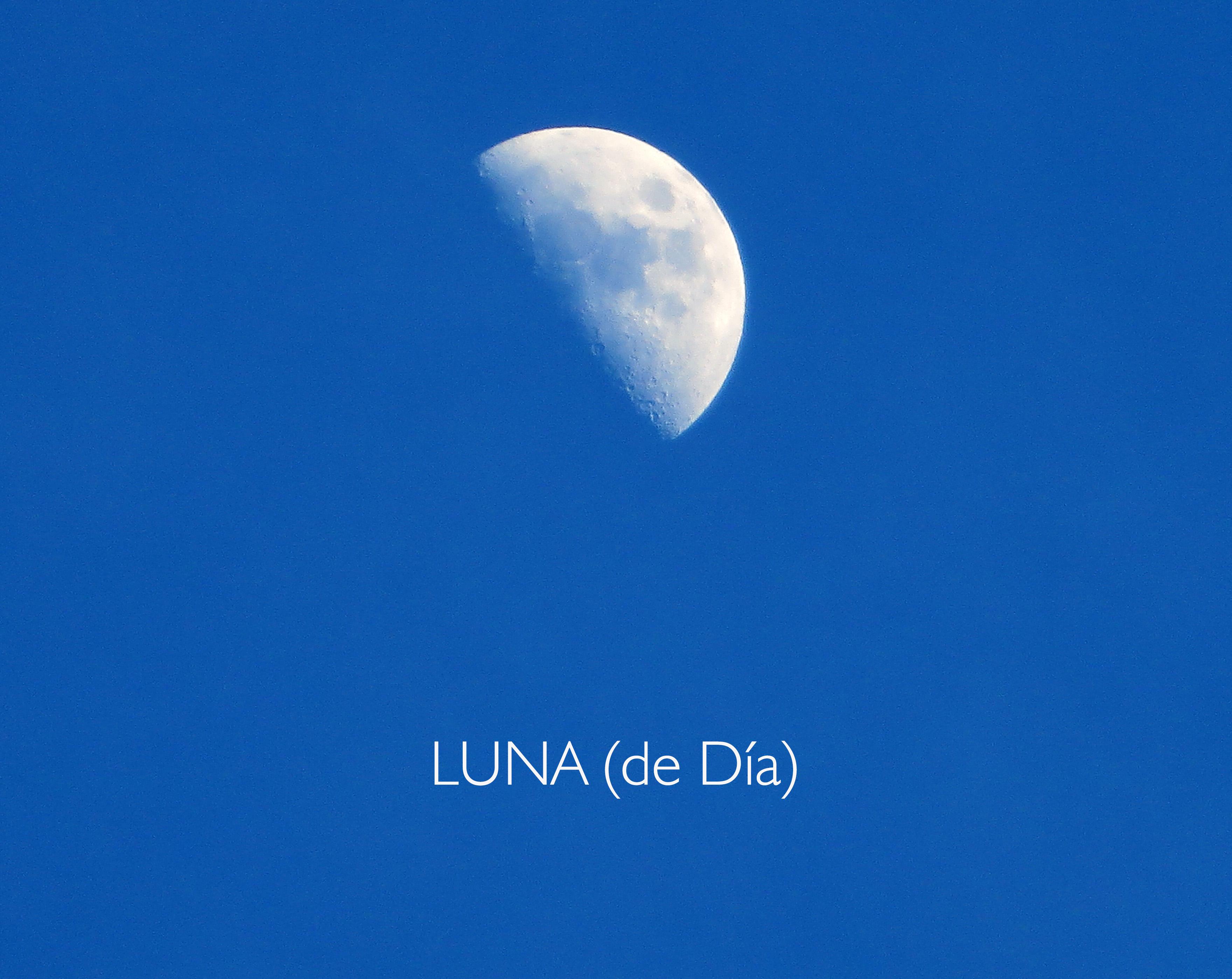 lunadia