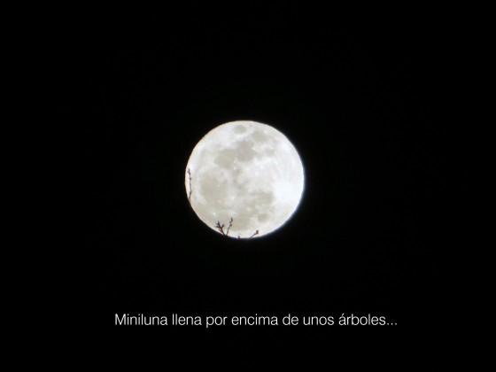 miniluna2