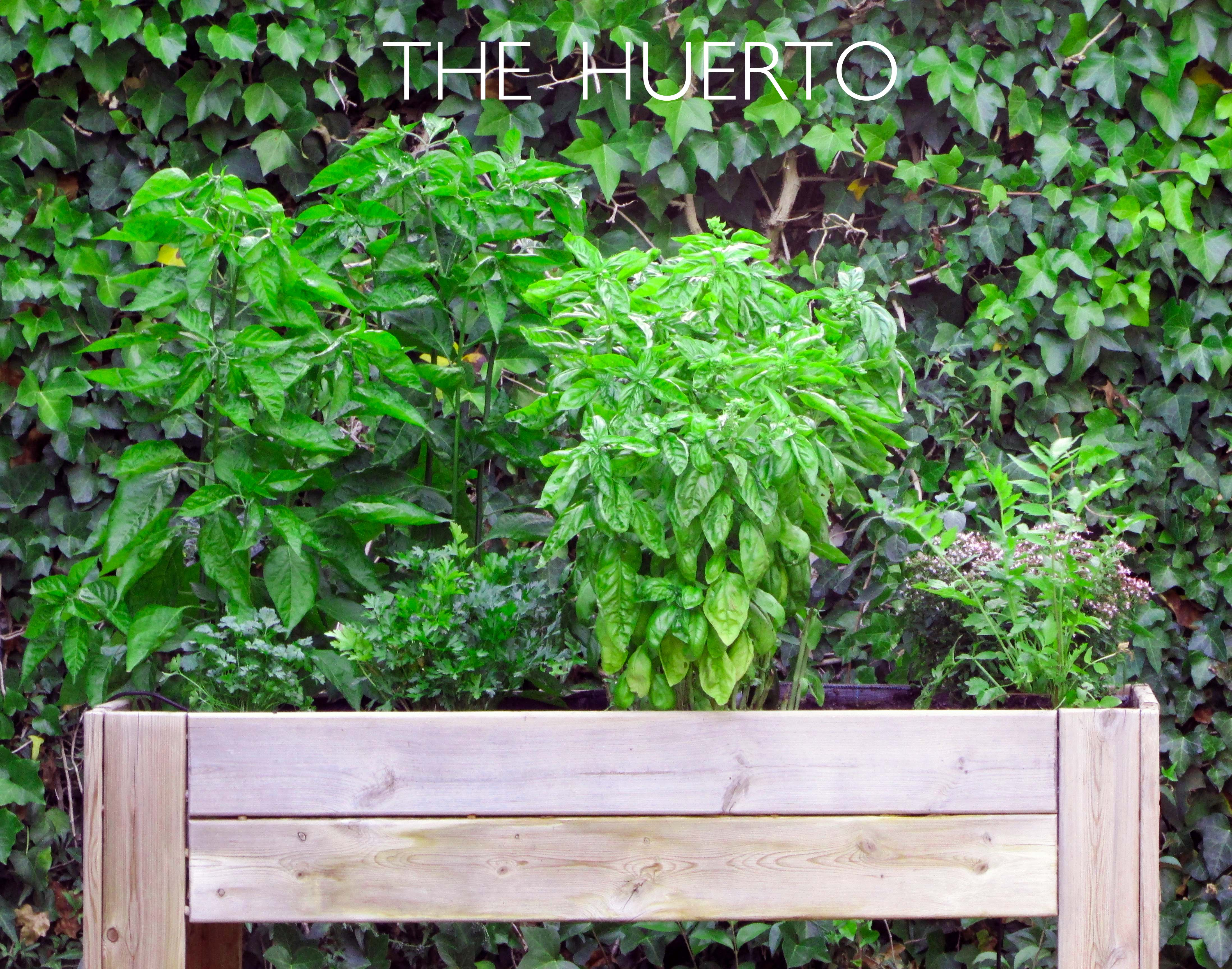 huerto3