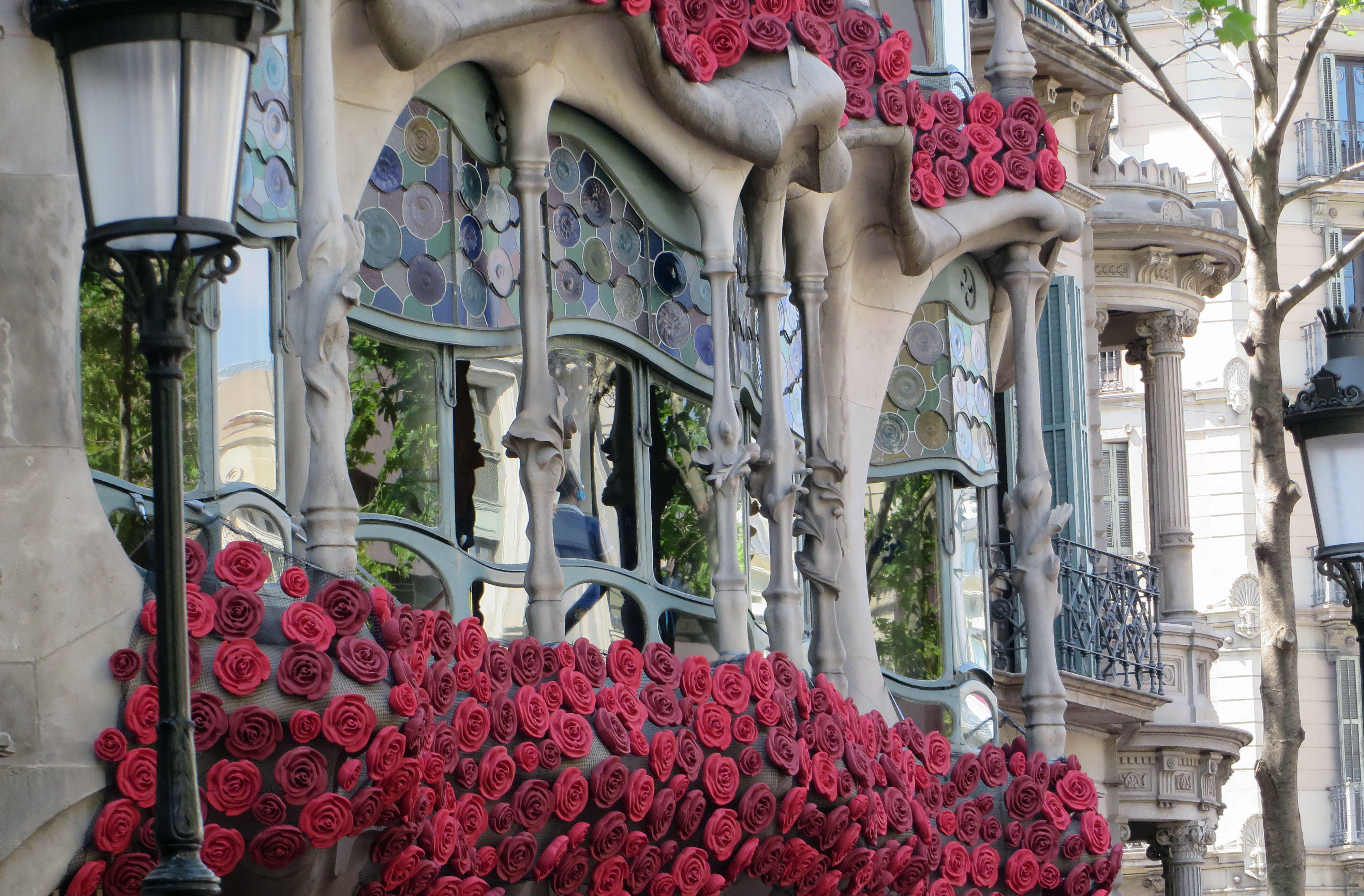 rosas1